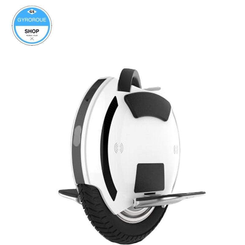 roue électrique légère