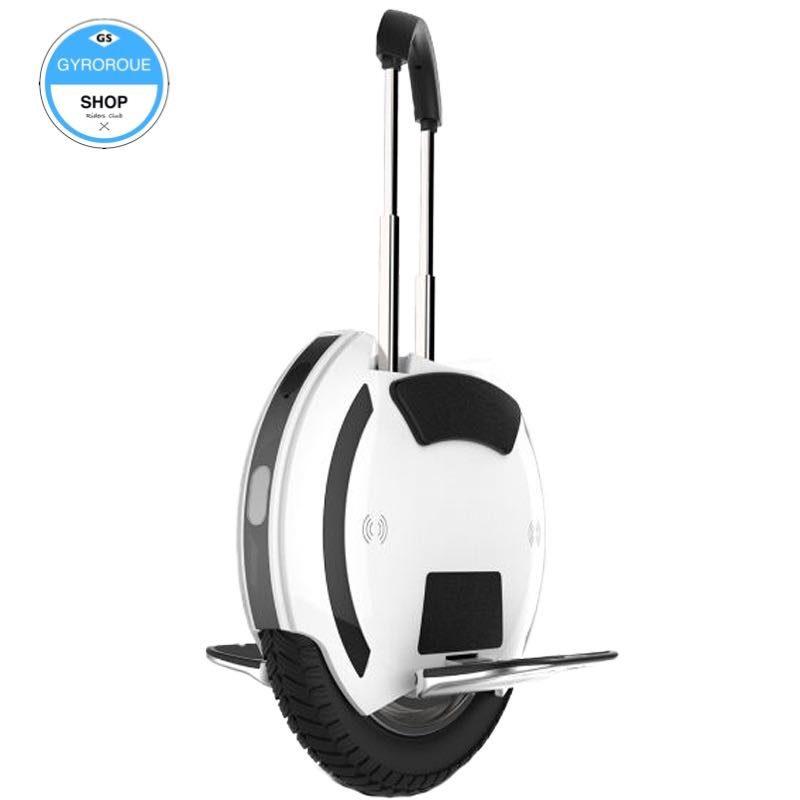 roue électrique avec trolley